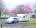 Camping Killarney