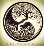 Aidi mac Dáibhi