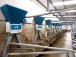 Orby Dairy Parlour Feeding System_Dairy Farming Ireland