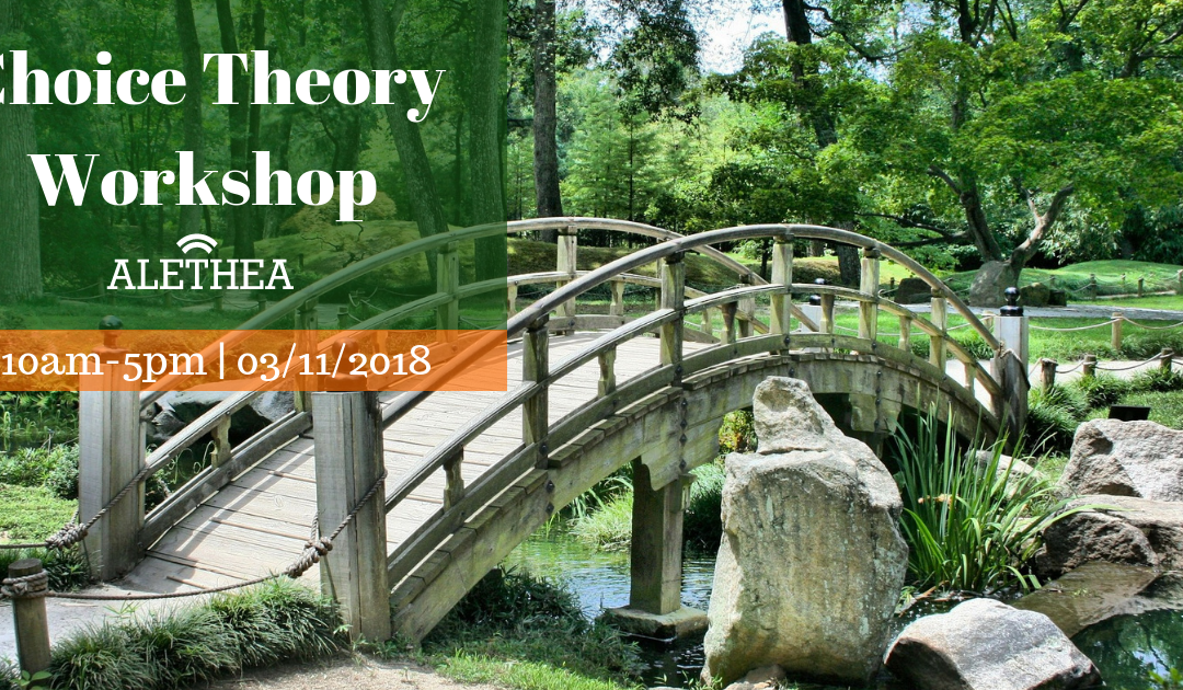 Choice Theory 1 Day Introduction Workshop